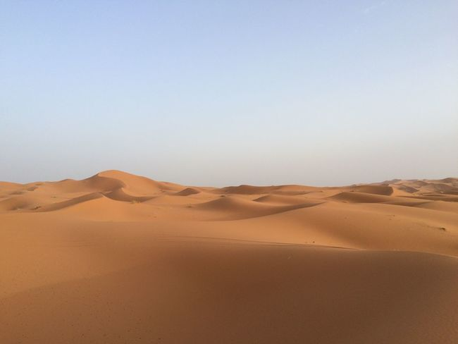 Arid Climate Day Desert Heat Landscape Morocco Nature Outdoors Pure Sand Sand Dune Silence Travel