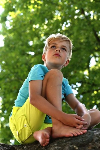 Low angle view of thoughtful boy looking away while sitting on tree