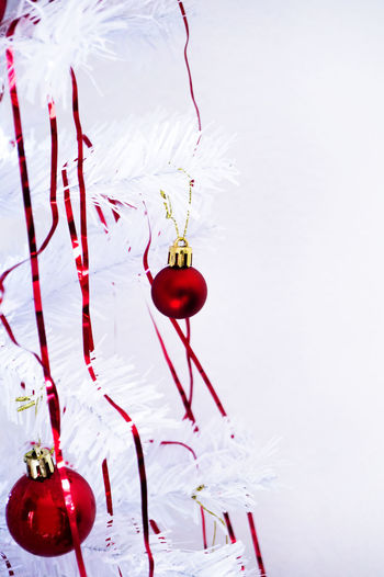 Close-up of christmas decorations hanging on white background