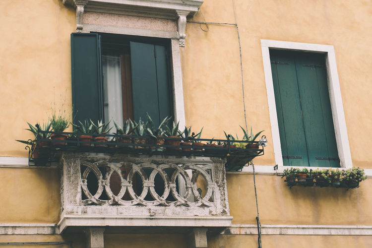 balcony Building Exterior Architecture Window Built Structure Building Potted Plant No People Plant Residential District Day House Wall - Building Feature Balcony Outdoors Nature Wall Growth Railing Glass - Material Green Color Flower Pot Houseplant Window Frame Italy Venice