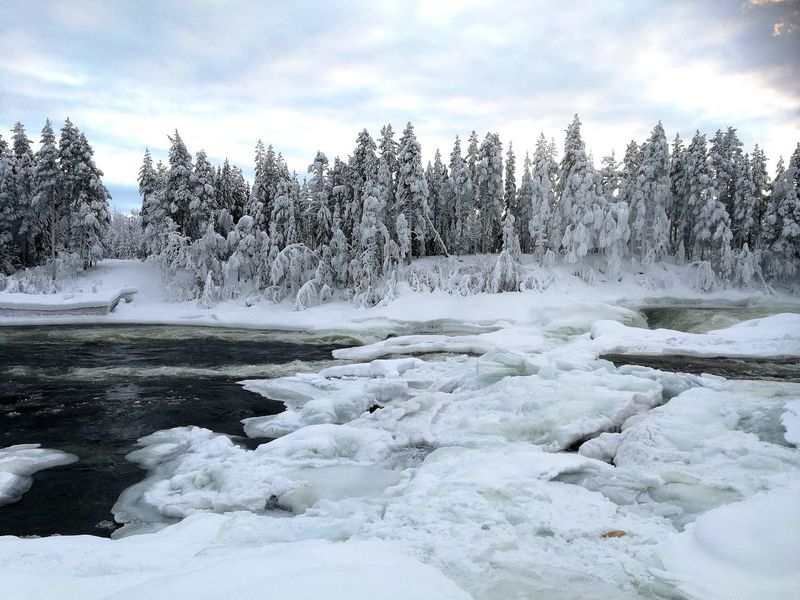 River Power In Nature Visit Lapland Polar Climate Cloud - Sky Outdoors Frost Beauty In Nature Travel Destinations Scenics Landscape Water Tree Day Sky Shades Of Winter An Eye For Travel