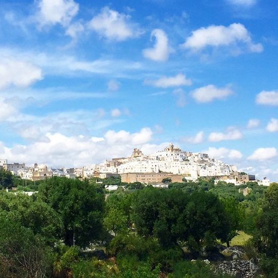 Ostuni in the sun ☀️💙🌵Lovepuglia Ostuni Beauty Happiness Puglia Sunrise Seaside Sea Skysultans Interiordesign Ig_tuscany Sea Mare Beautifulitaly Beauty Travelling Travelshare Travelblog Travels Travelblogger Travelpic Travelpicture Travelitaly Travel Traveltheworld fruit foodshare vegan greenlife veggie