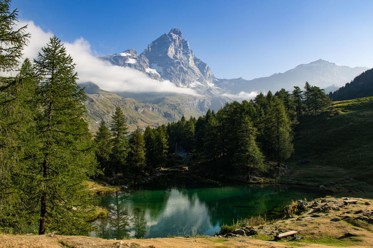 Tranquil Scene Tranquility Mountain Scenics Tree Water Beauty In Nature Nature Idyllic Reflection Majestic Calm Stream River Non-urban Scene Mountain Range Remote Check This Out Photography Photooftheday Landscape Landscape_Collection Italy Val D'Aosta