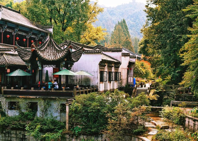 The village in autumn My Traveling Photography From My Point Of View My Street Photography Taking Photos Exceptional Photographs Autumn Autumn Colors Autumn Leaves Architecture Green Color Old Village Restaurant
