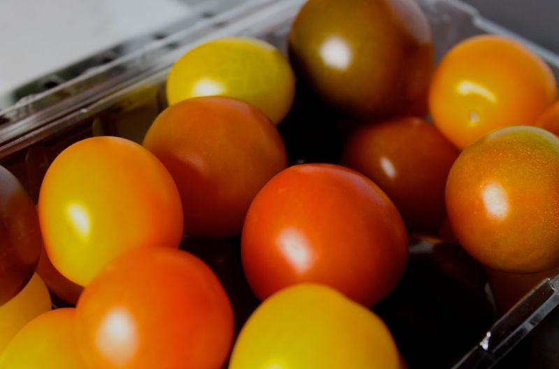 Close-up of fresh cherry tomatoes