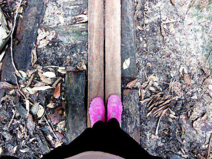 My way. Road