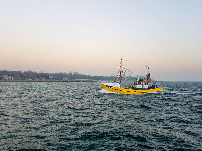Boat Sea Transportation Beauty In Nature Water Sunset No People Outdoors Floating On Water Sailing Day Sky Fishing Boat Harbor Fish Fisherman Yellow