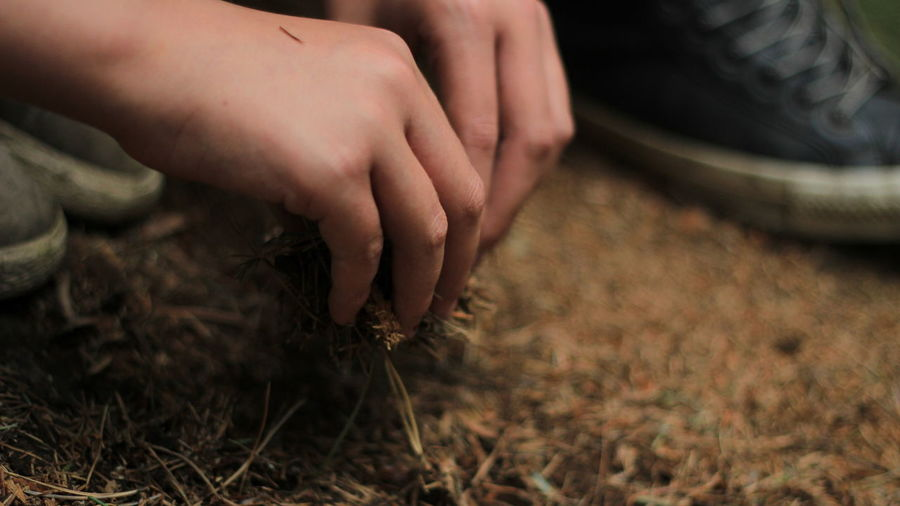 Cropped Focus On Foreground Growth Human Finger Lifestyles Nature Outdoors Part Of Person Personal Perspective Plant Touching Uncultivated
