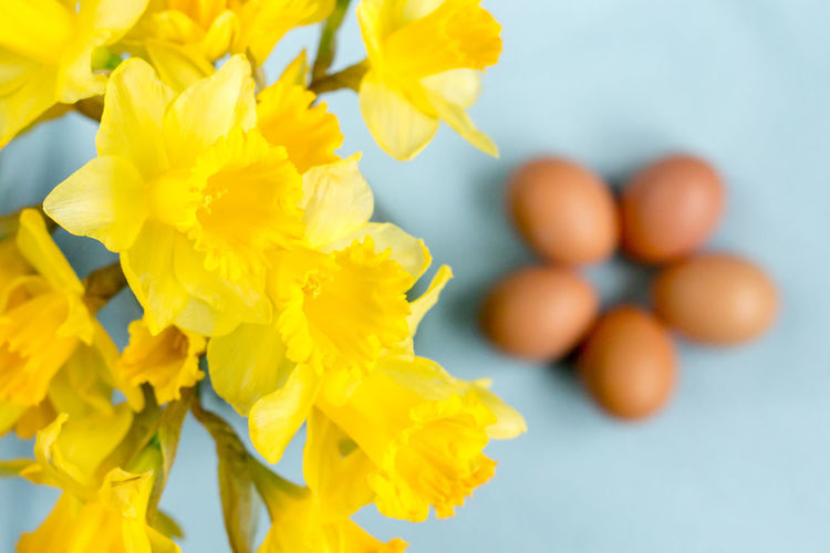 Close-Up Of Yellow Daffodils Against Brown Eggs On Table