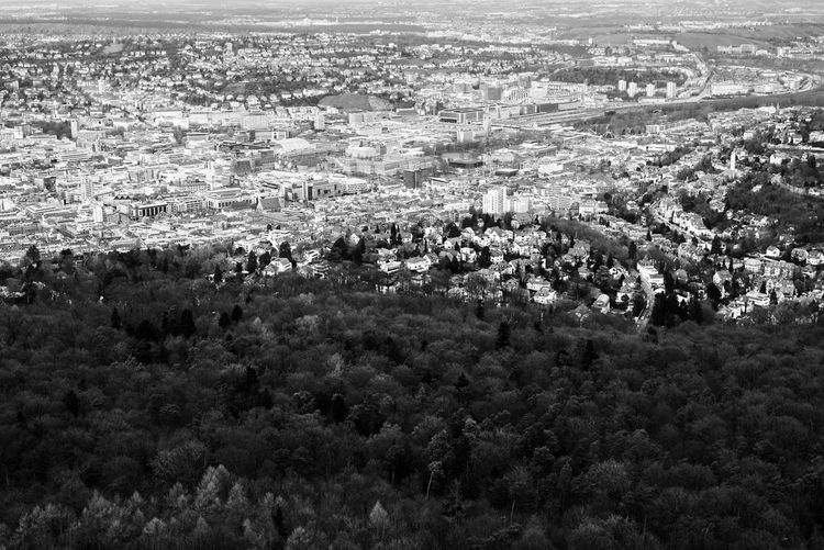 The contrast of humanity and nature. Aerial View Architecture Black & White Black And White Blackandwhite City Cityscape Contrast Between Nature & Humanit Dark Darkness And Light Day Fernsehturm Forest High Angle View Landscape Nature Nature Nature Collection No People Outdoors Scenics Shadow And Light Stunning Tree EyeEm Diversity