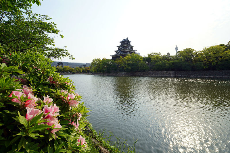 Beauty In Nature Breeze Castle Day Flower Garden Growth Japan Japanese  Japanese Castle Lake Landscape Nature No People Outdoors Park Plant Refreshing Scenics Sky Summer Summertime Tranquility Tree Water