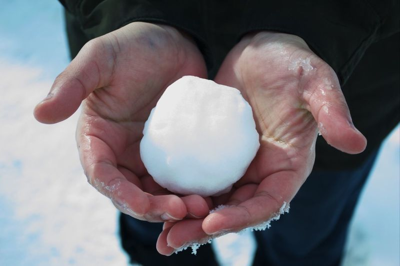 Midsection Of Man Holding Snowball