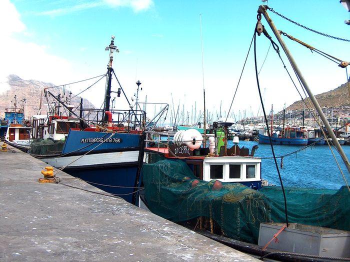 Blue Boat Boats
