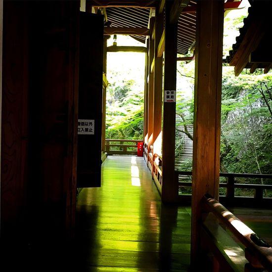 禅林寺 永観堂 床みどり 東山 京都 Kyoto Relaxing Enjoying Life Kyotojapan