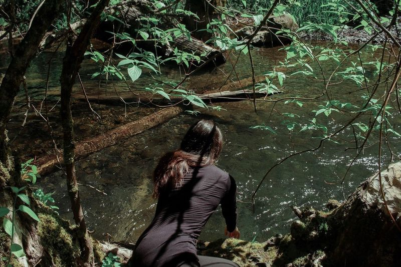 Rear view of woman touching water in pond at forest