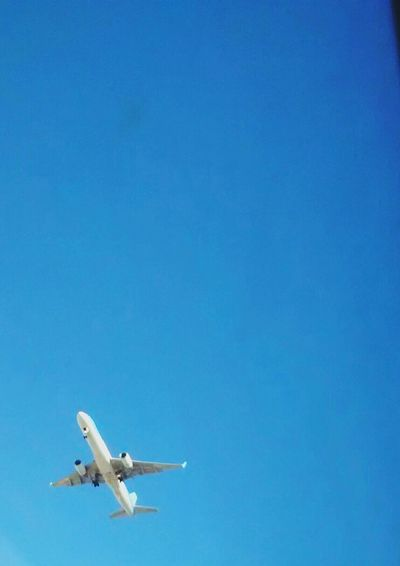 Wherever I go...✈🌍🌎🌏 Taking Photos Check This Out That's Me Hello World Cheese! Relaxing Hi! Enjoying Life Things I Like Color Movilgrafía Azul No People Avion Plane Outdoors Outdoor Photography Outside Sky Cielo Viaje Viajar Traveling Travel On The Way