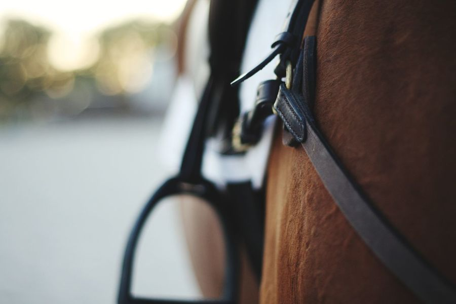 EyeEmNewHere Equestrian Close-up No People Outdoors Day Saddle Leather English Transportation Stirrup EyeEm Selects Mode Of Transport Hanging First Eyeem Photo