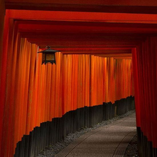 Thousand gates at Fushimi Inari Shrine in Kyoto . Waiting for a moment without tourists was a challenge! There are a lot of torii gates, each one has been donated by someone to the temple. TORII Scenery Tourist Travel Shrine Inari Japan Tourism Summer 日本 Starfestival 写真好きな人と繋がりたい 短冊 祈り Culture 七夕 ファインダー越しの私の世界 三大稲荷 稲荷 Tanabata My Favorite Photopray ig_japan stars カメラ部 kyotojapan lumix gh2