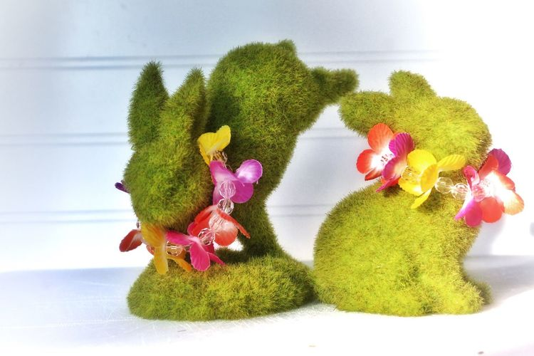Close-up of bunny shaped topiary against white wall