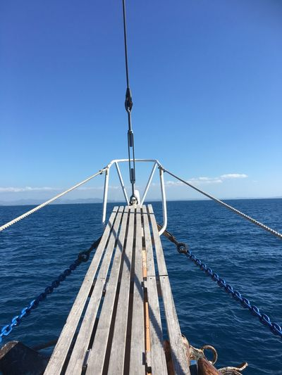 Wales Tail Tour Sea Blue Water Sky Clear Sky Horizon Over Water Sailing Outdoors Day No People Nature Boat Deck Fiji