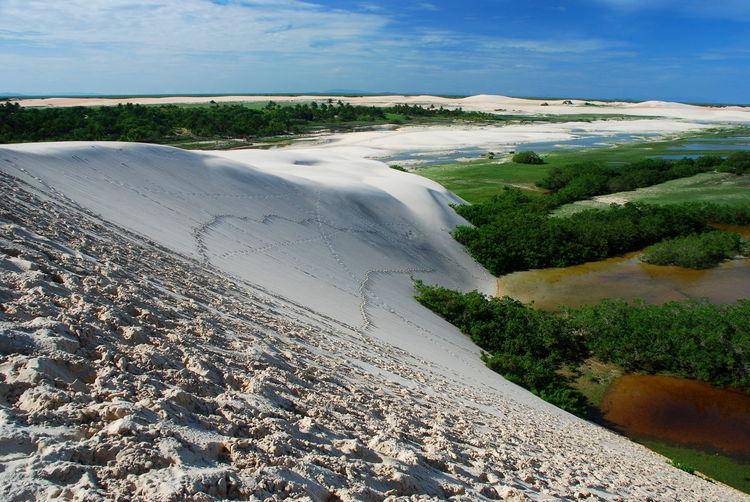 Tatajuba dunes. Jericoacoara Brasil Brazil Calm Ceará Ceará-Brasil Dune EyeEm Brasil Jeri Jericoacoara Jericoacoara - CE Nature Non-urban Scene Outdoors Remote Sand Sand Dune Scenics Solitude Tatajuba Tourism Travel Travel Destinations Finding New Frontiers