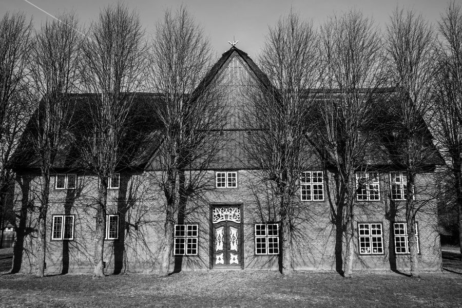 Old Architecture Old House Trees Historical Building Black & White Blackandwhite Black And White Exhibition