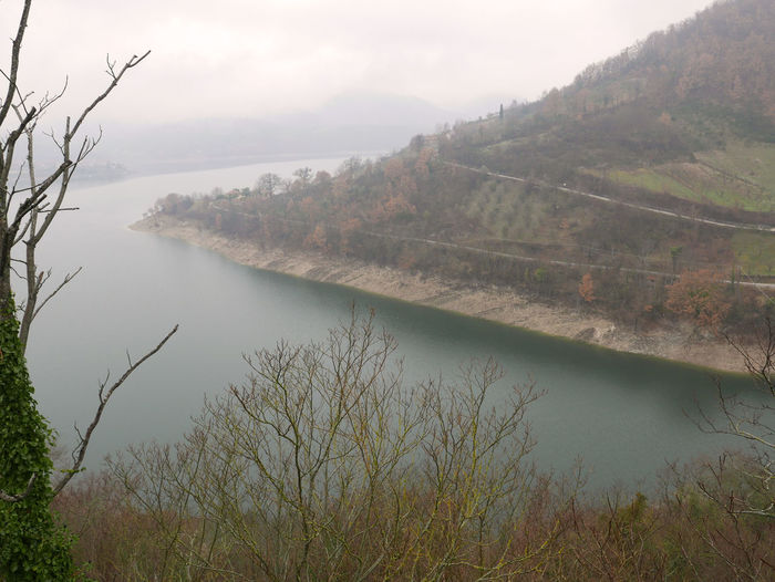Bare Tree Fog Lago Del Turano Lake Landscape Mist Tranquil Scene Tranquility Water