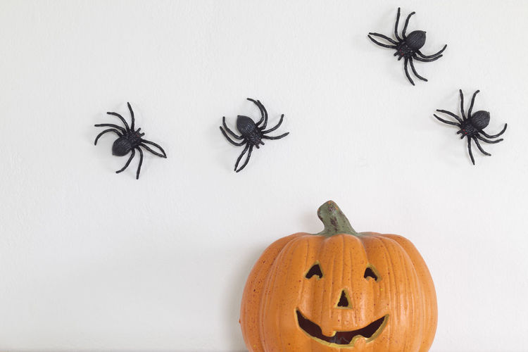 Jack o lantern against artificial spiders on wall