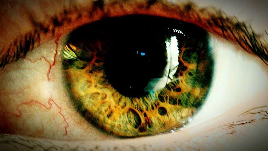 eye up close Close-up Eye Iris - Eye Green Eyes Macro
