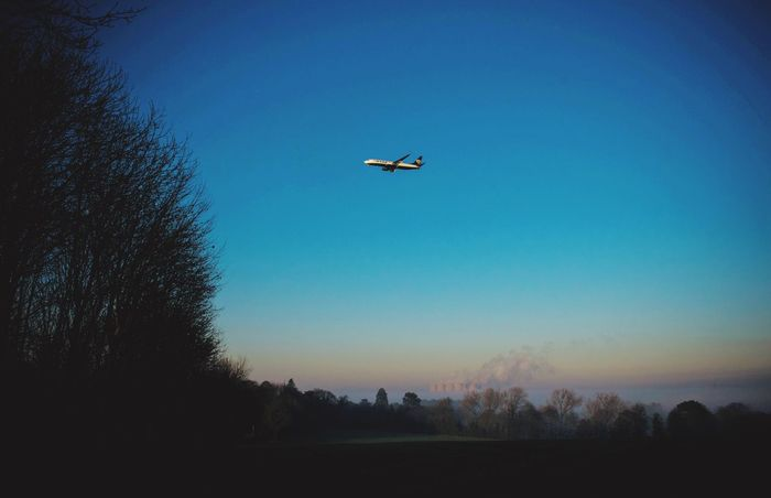 Flying Airplane Transportation Tree Sky Mode Of Transport No People Clear Sky Mid-air Aircraft Low Angle View Nature Airways Silhouette Outdoors Air Vehicle Flight Day Aeroplane Finding New Frontiers Ryanair