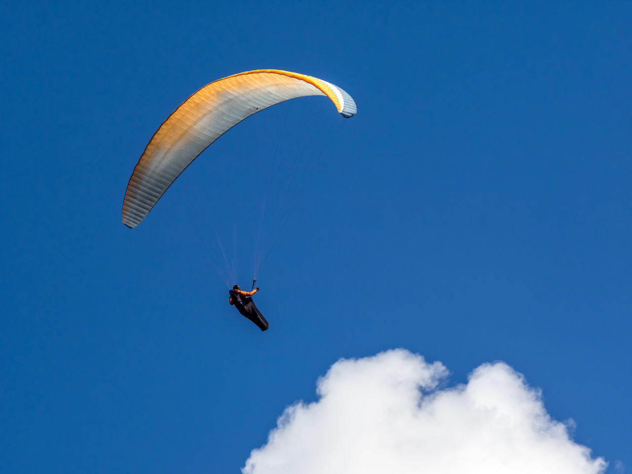 mid-air, flying, parachute, extreme sports, adventure, exhilaration, paragliding, real people, low angle view, gliding, blue, leisure activity, one person, freedom, skydiving, outdoors, sky, day, sport, jumping, lifestyles, clear sky, nature, stunt person, people