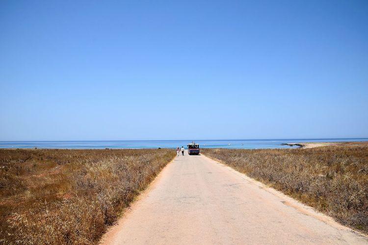 Sicily, Italy Sand Dune Water Sea Clear Sky Beach Full Length Marram Grass Sand Blue Summer