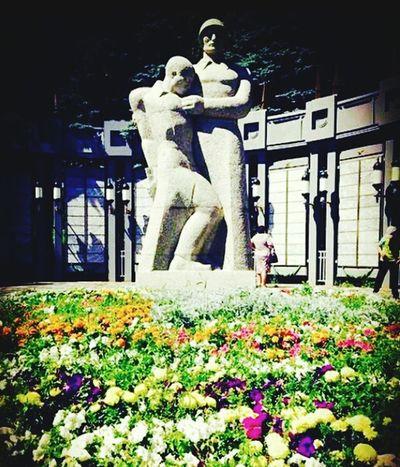 небо⛅️ красиво крамивоеместо красотище красота цветы🌸🌼🌻💐🌾🌿 цветы 9мая🎆🎇😆 9 май