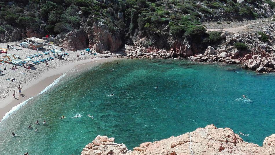 Nature Costa Paradiso Sardegna First Eyeem Photo Pet Portraits