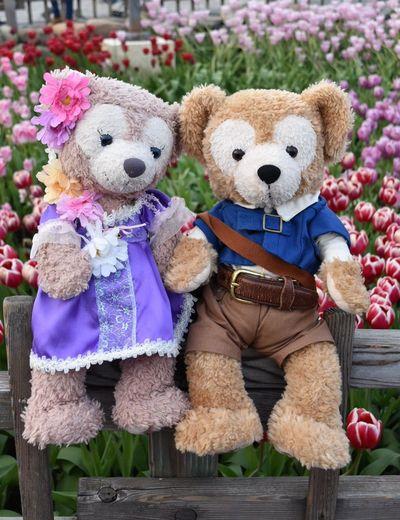 ShellieMay Duffy Toy Teddy Bear Cute Bear