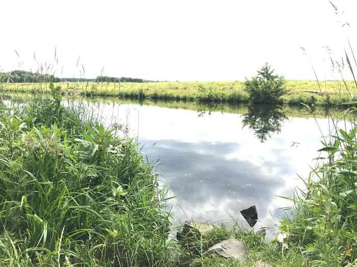 Memories Summer Break Water Reflection Lake Nature Outdoors Growth Day No People Green Color Tranquility Tranquil Scene Beauty In Nature Scenics Grass Tree Flood