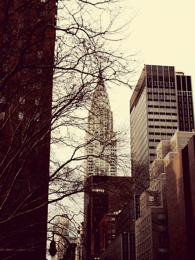 New York City Streetphotography Chrysler Building Manatthan Eyemstreetphoto Building Tourist Battle Of The Cities