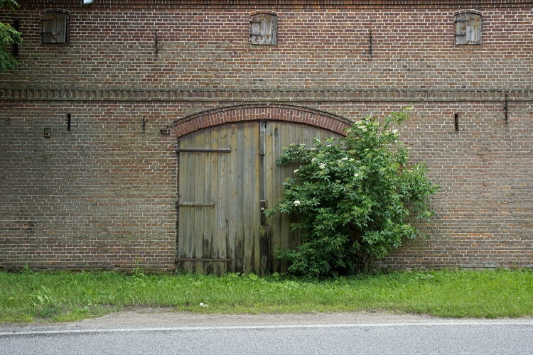 Architecture Barn Building Exterior Built Structure City Closed Day Door Ivy No People Outdoors Plant Road