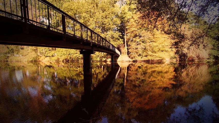 Water Reflection Bridge Connection Architecture Bridge - Man Made Structure Built Structure Nature Tree Sky Day Sunset Outdoors River