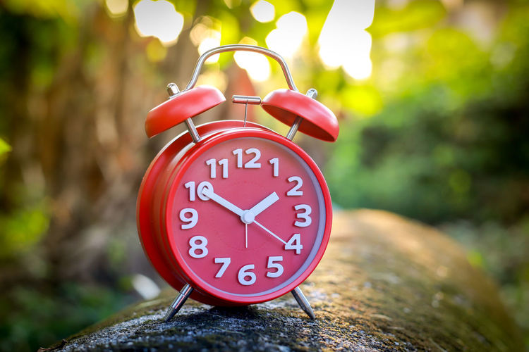 Red Alarm Clock Alarm Clock Clock Time Focus On Foreground Number Close-up Red Clock Face Minute Hand Day No People Outdoors Accuracy Communication Tree Shape Circle Hour Hand Clock Hand Geometric Shape Red Alarm Clock Clockworks