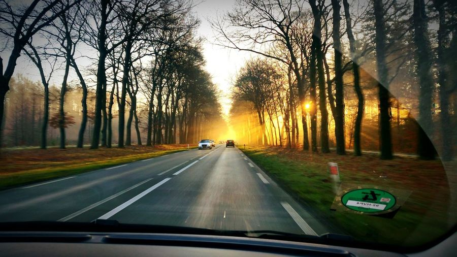 Ede Sunrise On The Road Dutch Forrest Hogeveluwe Veluwe Sun Zon BOS Zonsopkomst Ginkelseheide Car Ride  Nature Natuur First Eyeem Photo MeinAutomoment The Drive Let's Go. Together.
