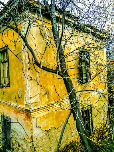 Back in time, old yellow house ,architecture, urban Outdoors Fine Art Painting Fine Arts Photography GalleryOfModernArt Fine Art Gallery Interior Design EyeEmbestshots Painting On The Wall EyeEmNewHere Poster Art Art, Drawing, Creativity Abstract Photography Eye Em Nature Lover Abstract Art ArtWork Urban Art First Eyeem Photo Wallpaper, Modern Art Vintage The Secret Spaces Break The Mold Art Is Everywhere The Great Outdoors - 2017 EyeEm Awards Paint The Town Yellow