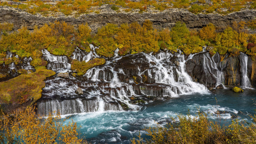 Hraunfossar is a series of waterfalls formed by rivulets streaming over a distance of about 900 metres out of the Hallmundarhraun, a lava field which flowed from an eruption of one of the volcanoes lying under the glacier Langjökull. The waterfalls pour into the Hvítá river from ledges of less porous rock in the lava. Water Scenics - Nature Rock Autumn Beauty In Nature Motion Waterfall Rock - Object Nature Solid Land Forest Environment Tree Flowing Water No People Plant Long Exposure Sport Outdoors Flowing Change Power In Nature Stream - Flowing Water Running Water