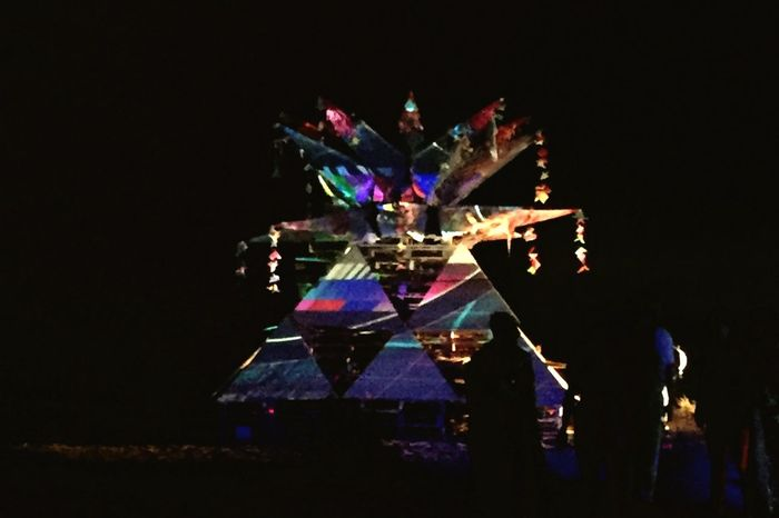 Night Projection Mapping Lotus Art Installation Shadows