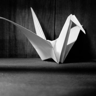 Folded paper crane Folded Paper Crane 折り鶴 Origamiart Origami Cranes Origami Craft Origami Black Background Studio Shot Black Color Single Object Shape Close-up