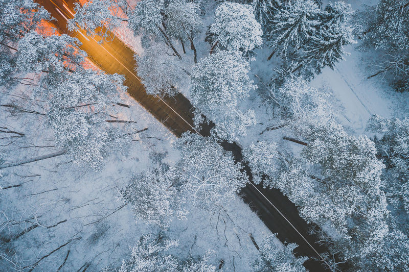 Snowy road Aerial View Aerial Drone  Mavic 2 Mavic 2 Pro DJI X Eyeem Europe Winter Snow Wintertime Winter Wonderland Snowy Road Long Exposure Car Motion Cold Temperature Frozen Ice Nature No People Tree Day Beauty In Nature Plant Outdoors Frost High Angle View Covering Tranquility White Color Capture Tomorrow