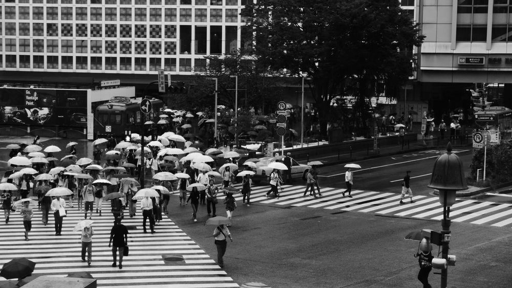 Starting to get crowded City Street Walking City Life Traffic Pedestrian Large Group Of People Outdoors Men Women Busy Day Living Life Observing Live In The Moment The Week On EyeEm Been There. Black And White Friday An Eye For Travel Mobility In Mega Cities Stories From The City Adventures In The City The Traveler - 2018 EyeEm Awards The Great Outdoors - 2018 EyeEm Awards The Street Photographer - 2018 EyeEm Awards My Best Travel Photo