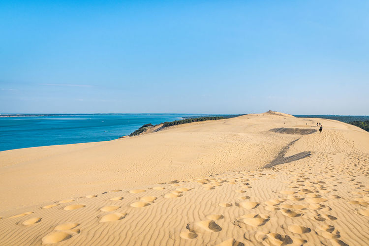 Land Sea Water Sky Sand Scenics - Nature Beach Beauty In Nature Horizon Horizon Over Water Tranquil Scene Nature Tranquility Day Clear Sky Blue Non-urban Scene FootPrint Idyllic Outdoors
