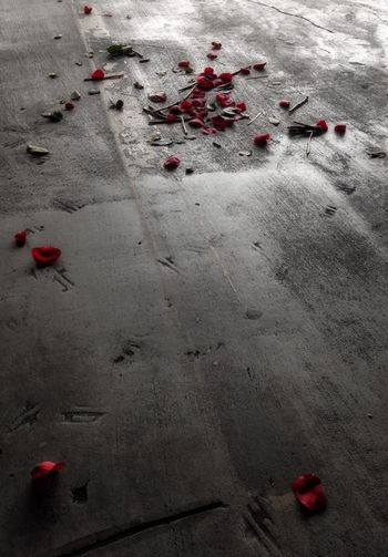 What's love got to do with it... Red Petals Rose Petals
