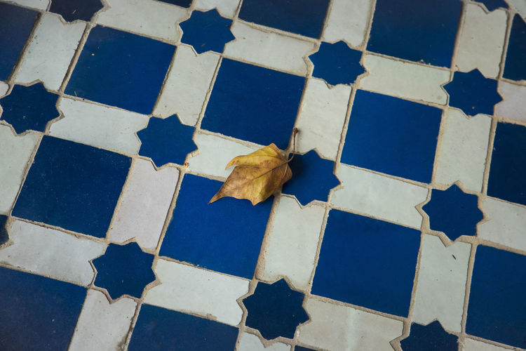 Herbstblatt -